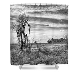 Shower Curtain featuring the photograph View For The Levy by Howard Salmon