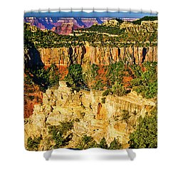 Shower Curtain featuring the photograph View From Angel Point  by Bob and Nadine Johnston