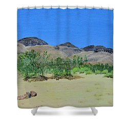 Shower Curtain featuring the painting View From Sharon's House - Mojave by Linda Feinberg