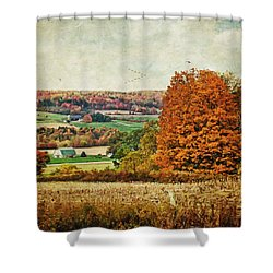 View From The Hill... Shower Curtain by Lianne Schneider