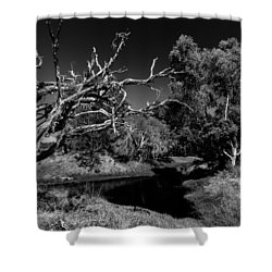 View Over North Lake Shower Curtain