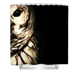 Vigilant In Darkness Shower Curtain by Lourry Legarde