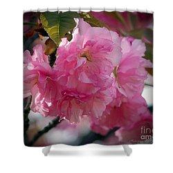 Vignette Cherry Blossom Shower Curtain