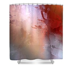 Vii - Kahlan Shower Curtain