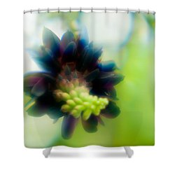 Shower Curtain featuring the photograph Vine 1 by Travis Burgess
