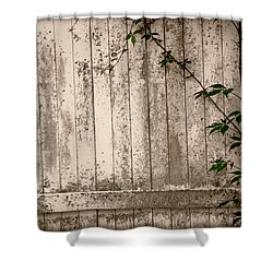 Shower Curtain featuring the photograph Vine And Fence by Amanda Vouglas