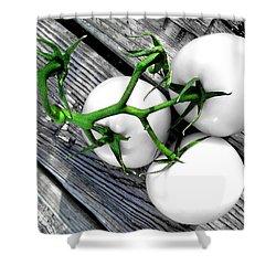 Vine Ripened Trio - Glossy White Shower Curtain by Shawna Rowe