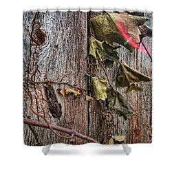 Vines And Barns Shower Curtain