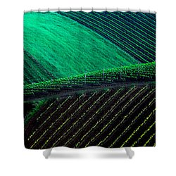 Vineyard 05 Shower Curtain