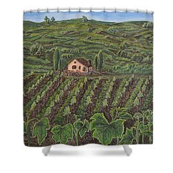 Vineyard In Neuchatel Shower Curtain