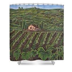 Vineyard In Neuchatel Shower Curtain by Felicia Tica