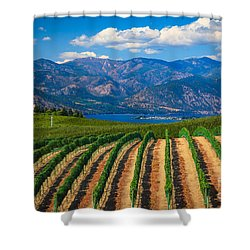 Vineyard In The Mountains Shower Curtain