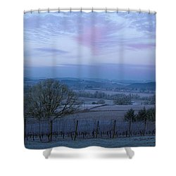 Vineyard Morning Light Shower Curtain by Jean Noren