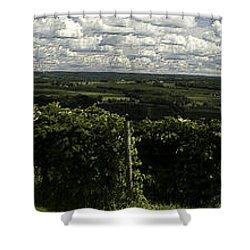 Vineyard On Keuka Lake Shower Curtain by Richard Engelbrecht