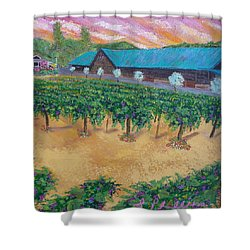 Vineyard Sunset Shower Curtain by Scott Phillips