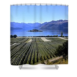 Vineyard View Of Ruby Island Shower Curtain by Venetia Featherstone-Witty