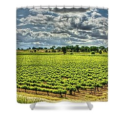 Vineyards Almost Ripe Shower Curtain