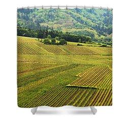 Vineyards Below Zellenberg France 1 Shower Curtain by Greg Matchick