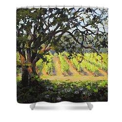 Vineyards Edge Shower Curtain by Karen Ilari