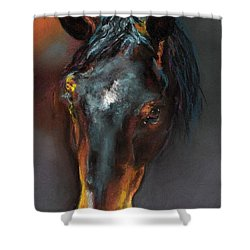 Vinnie Mustang Love Shower Curtain by Frances Marino