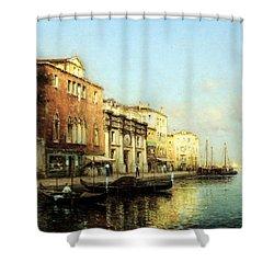Vinse Shower Curtain by Marc Aldine