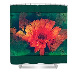 Vintage Aster Shower Curtain