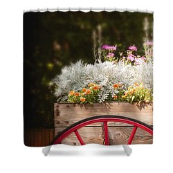 Vintage Beauties For Sale Shower Curtain