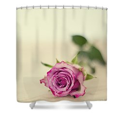 Vintage Chic Shower Curtain