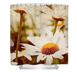Vintage Daisy Shower Curtain by Beverly Stapleton