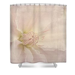 Vintage Flower Art - A Beautiful Place Shower Curtain