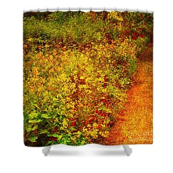 Shower Curtain featuring the photograph Vintage Garden Path by Terri Gostola