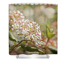 Shower Curtain featuring the photograph Vintage Inspired Pink And White Woodland Flowers With French Script by Brooke T Ryan
