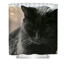 Vintage Luck Shower Curtain