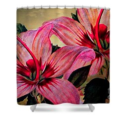 Vintage Painted Pink Lily Shower Curtain