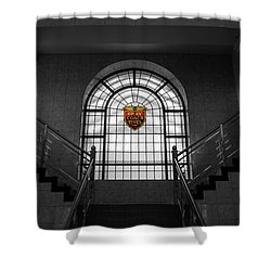 Vintage Stained Glass 2 Shower Curtain by Andrew Fare