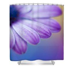 Violet 2 Shower Curtain