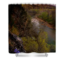Violet And Vultures Shower Curtain