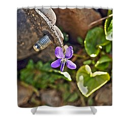 Violet In The Rust Shower Curtain by Crystal Harman