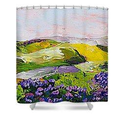 Violet Sunrise Shower Curtain by Allan P Friedlander