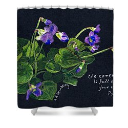 Shower Curtain featuring the painting Violets And Psalm 104 by Linda Feinberg