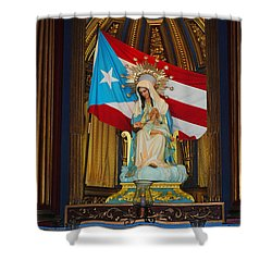 Virgin Mary In Church Shower Curtain