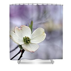 Virginia Dogwood Shower Curtain
