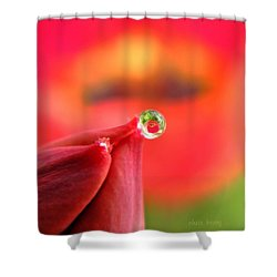Vision Of Tomorrow  Shower Curtain by Chris Berry