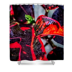 Visions Of Red Shower Curtain