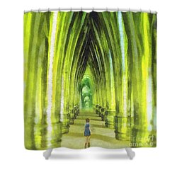 Visiting Emerald City Shower Curtain by Mo T