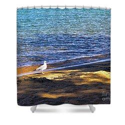Visitor - Lake Tahoe Shower Curtain