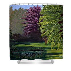Visitor To The Backyard Pond Shower Curtain by Vicki Maheu