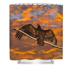 Vivid Vulture Shower Curtain
