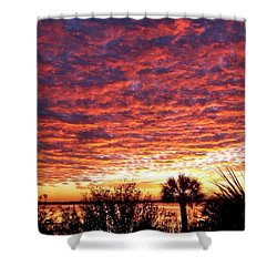 Voice Of God Shower Curtain by Karen Wiles