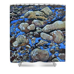 Voice Of The Stones Shower Curtain by Carla Stein
